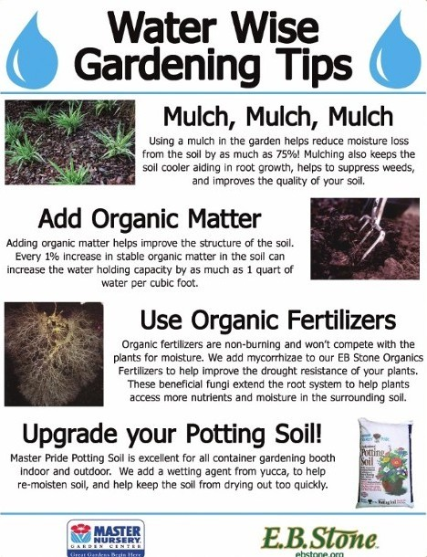 Water Wise Gardening Tips